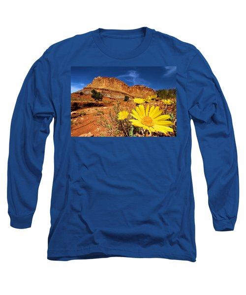 Rainbow Garden Long Sleeve T-Shirt
