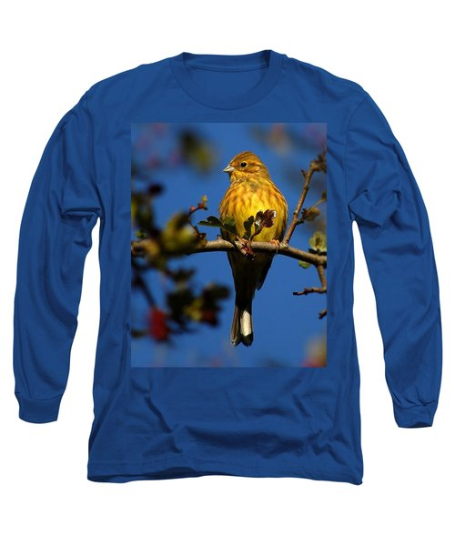 Yellowhammer Long Sleeve T-Shirt