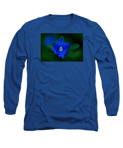 Long Sleeve T-Shirt featuring the photograph  Evolvulus Glomeratus Hawaiian Blue Eyes by Keith Hawley