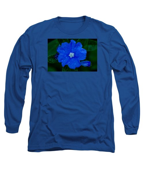 Long Sleeve T-Shirt featuring the photograph  Evolvulus Glomeratus by Keith Hawley
