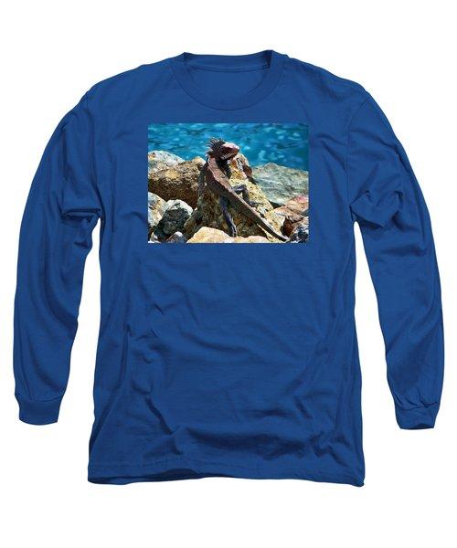 Green Iguana Long Sleeve T-Shirt by Anthony Dezenzio