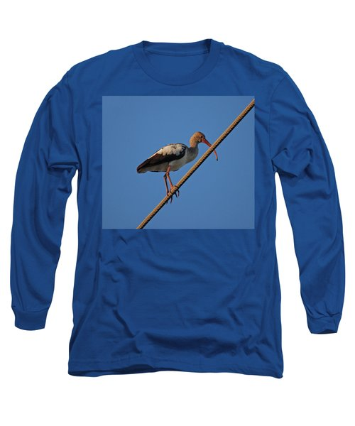 Long Sleeve T-Shirt featuring the photograph 8- Brown Ibis by Joseph Keane