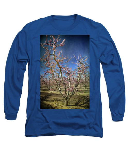 All Good Things Long Sleeve T-Shirt by Laurie Search