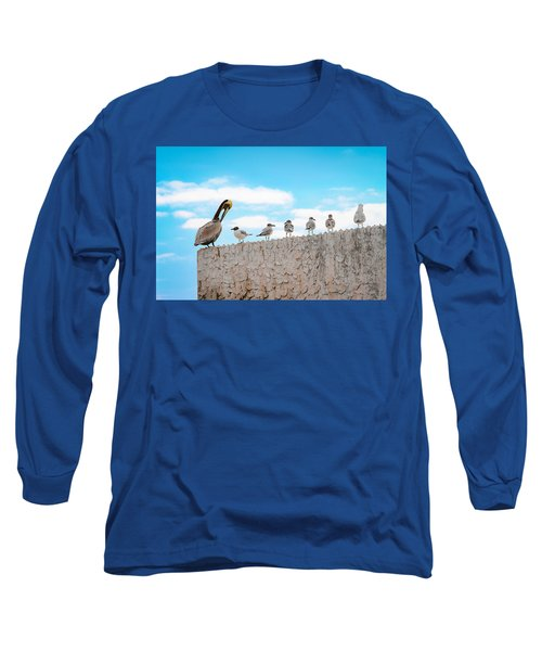 Birds Catching Up On News Long Sleeve T-Shirt