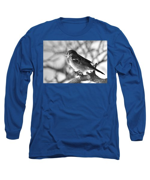 Chickadee Long Sleeve T-Shirt by Sheila Ping