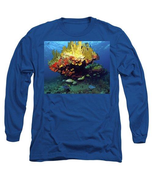 Coral Reef Scene, Calf Rock, Virgin Islands Long Sleeve T-Shirt