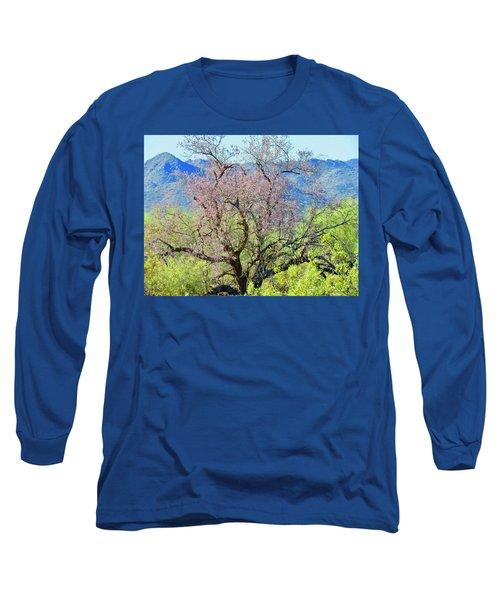 Desert Ironwood Beauty Long Sleeve T-Shirt