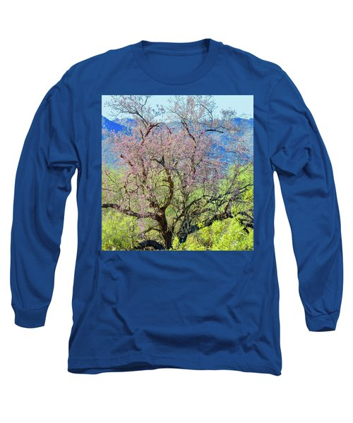 Desert Ironwood Beauty Long Sleeve T-Shirt