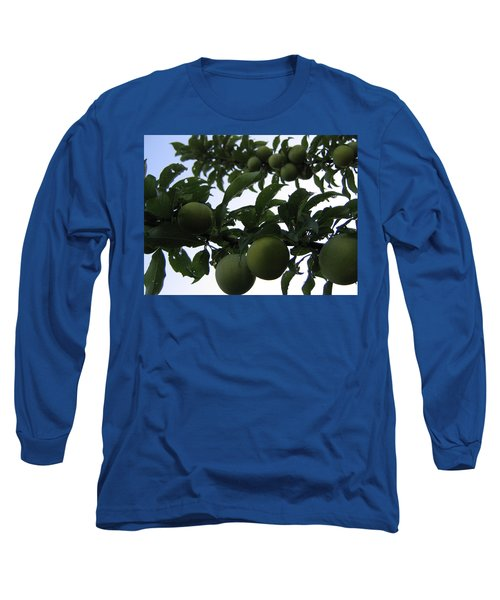 Fruit And Sky_raindrops Long Sleeve T-Shirt by Barbara Yearty