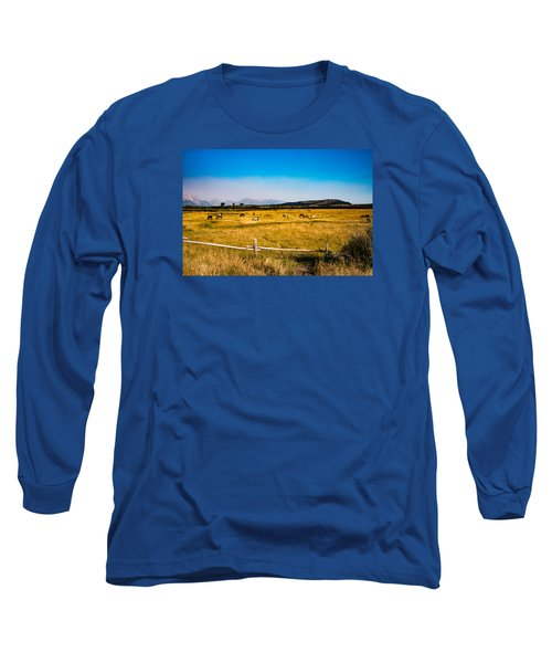 Grazing Horses Long Sleeve T-Shirt by Cathy Donohoue