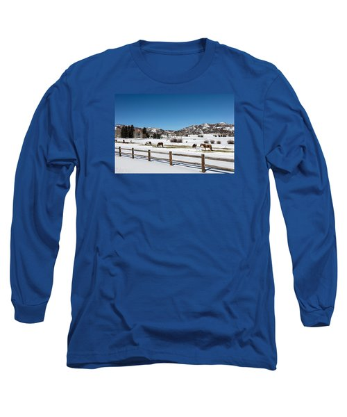 Horses On A Small Farm Near The Aspen Airport Long Sleeve T-Shirt