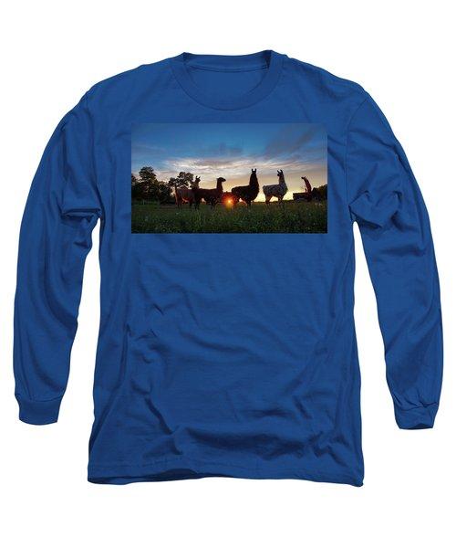 Llamas At Sunset Long Sleeve T-Shirt
