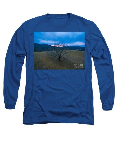 Majestical Tree Long Sleeve T-Shirt by Robert Loe