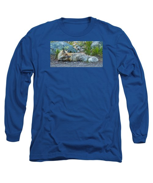 Long Sleeve T-Shirt featuring the photograph Pretty Boy Fox In Spring by Yeates Photography