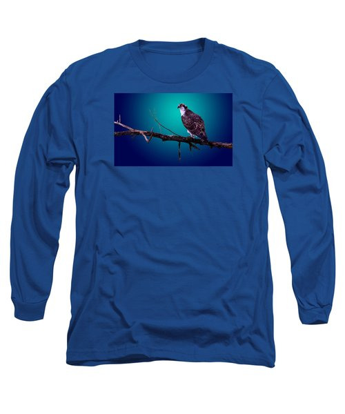 Radiant Raptor Long Sleeve T-Shirt by Brian Stevens