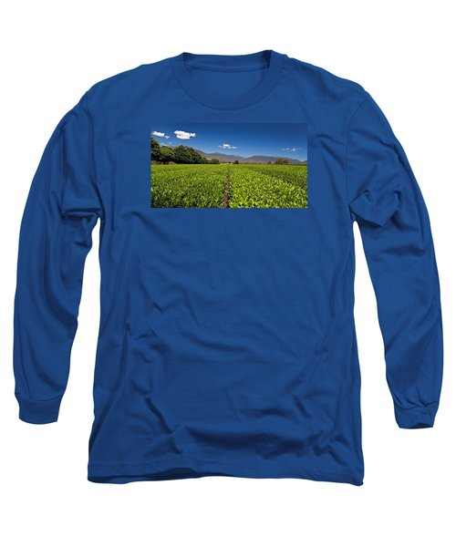 Ready For Harvest Long Sleeve T-Shirt by Mark Lucey