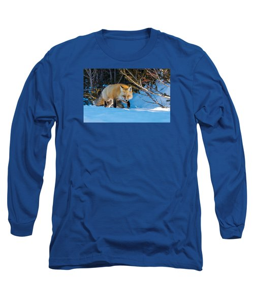 Long Sleeve T-Shirt featuring the photograph Red Fox In Winter Snow by Yeates Photography