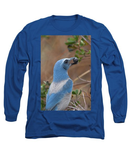 Scrub Jay With Acorn Long Sleeve T-Shirt