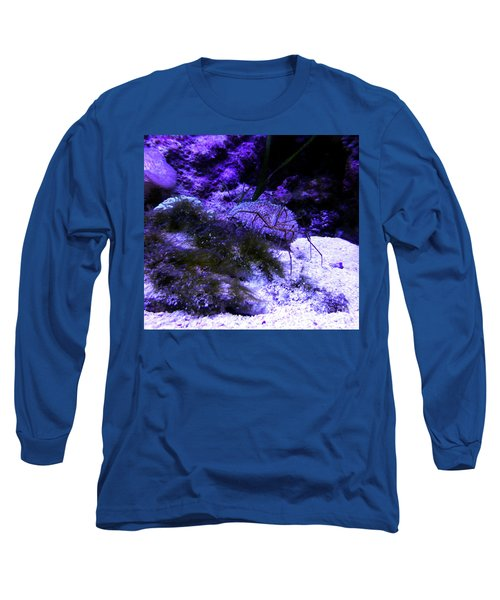 Long Sleeve T-Shirt featuring the photograph Sea Spider by Francesca Mackenney
