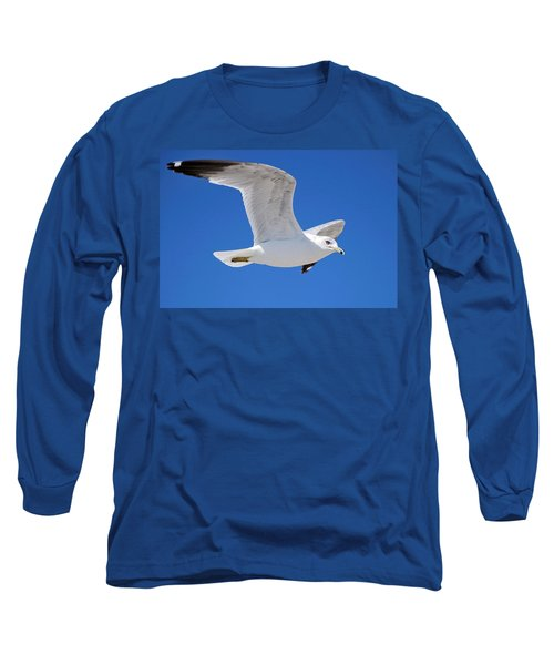 Seagull Long Sleeve T-Shirt by Ludwig Keck