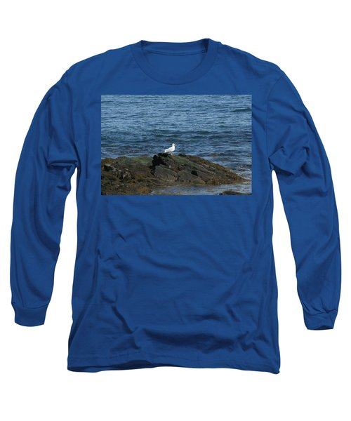 Long Sleeve T-Shirt featuring the digital art Seagull On The Rocks by Barbara S Nickerson