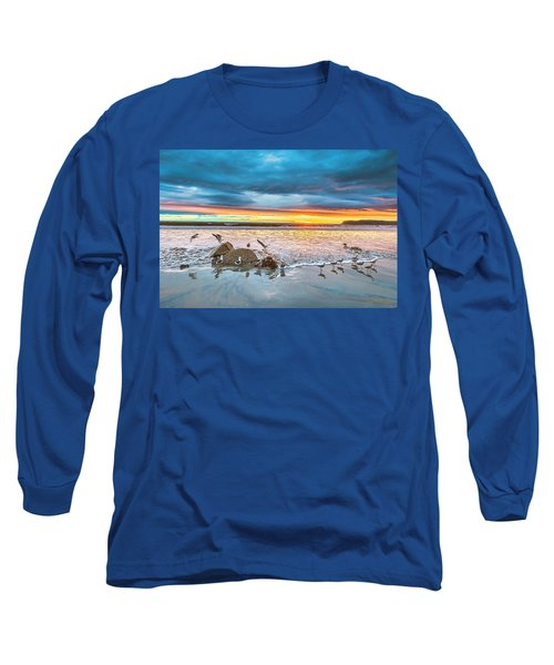 Seagull Sunset Long Sleeve T-Shirt