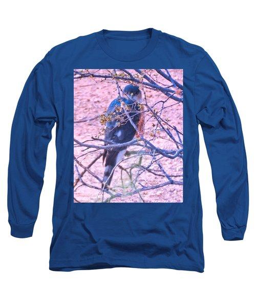 Sharp-shinned Hawk Hunting In The Desert 2 Long Sleeve T-Shirt