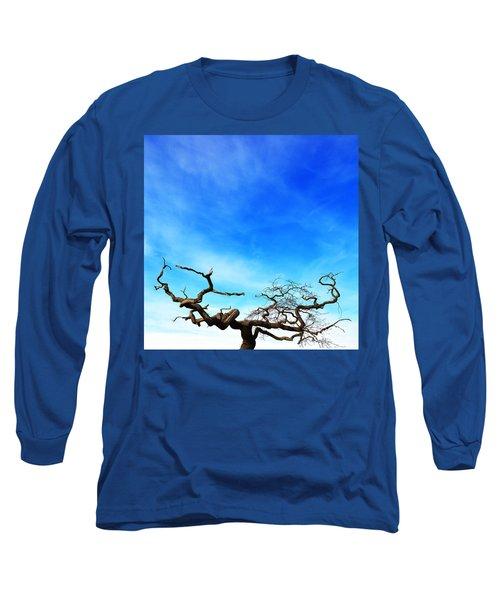 Tormented Long Sleeve T-Shirt