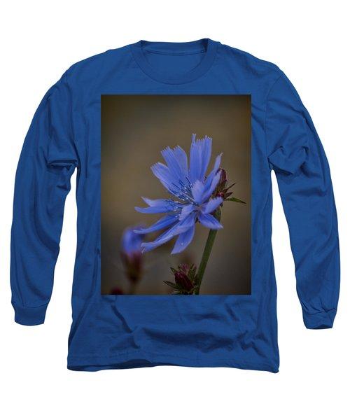 Wild Chicory Long Sleeve T-Shirt