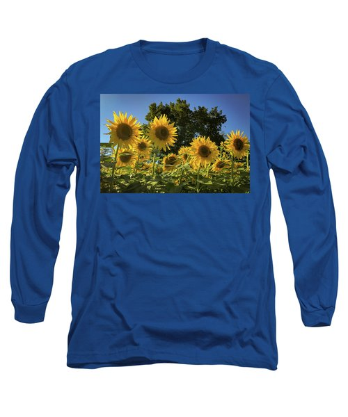 Sunlit Sunflowers Long Sleeve T-Shirt