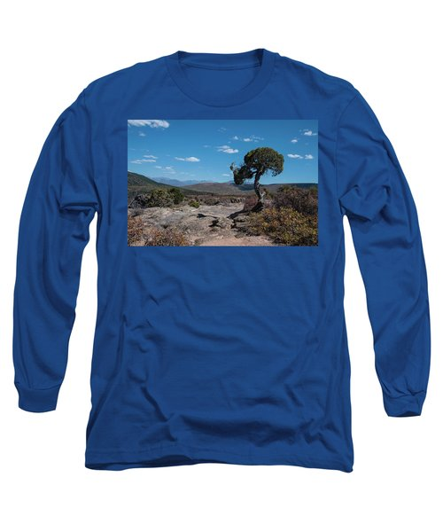 Pinyon Pine With North Rim In Background Black Canyon Of The Gunnison Long Sleeve T-Shirt