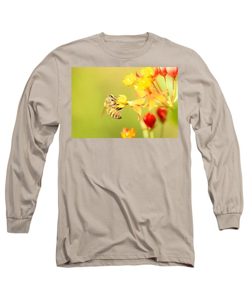 Long Sleeve T-Shirt featuring the photograph  Bee On Milkweed by Greg Allore