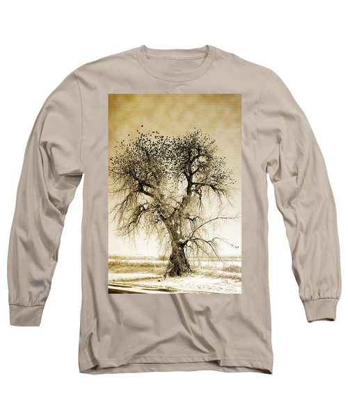 Bird Tree Fine Art  Mono Tone And Textured Long Sleeve T-Shirt