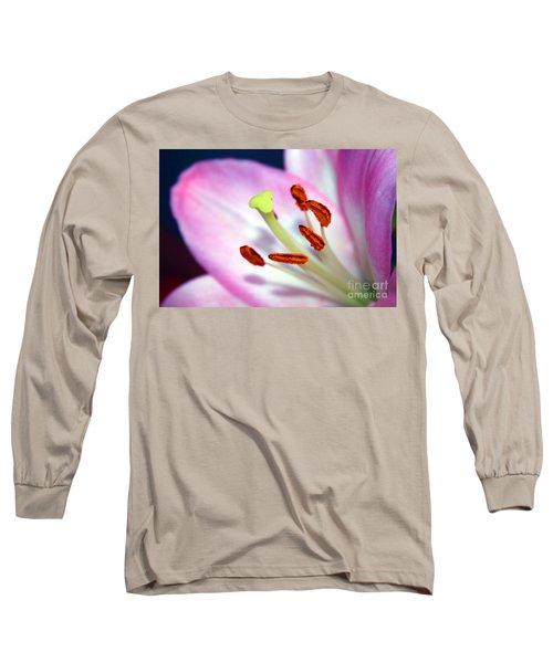 00302 Detail Long Sleeve T-Shirt