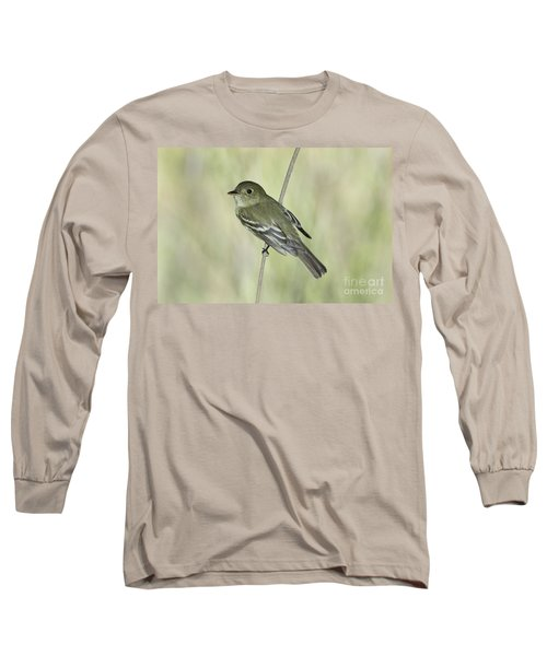 Acadian Flycatcher Long Sleeve T-Shirt by Anthony Mercieca