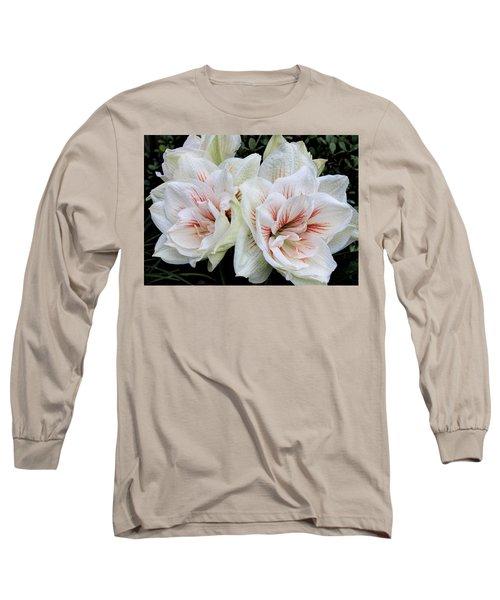 Amaryllis Cluster Long Sleeve T-Shirt