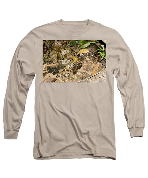 Boa Constrictor Long Sleeve T-Shirt