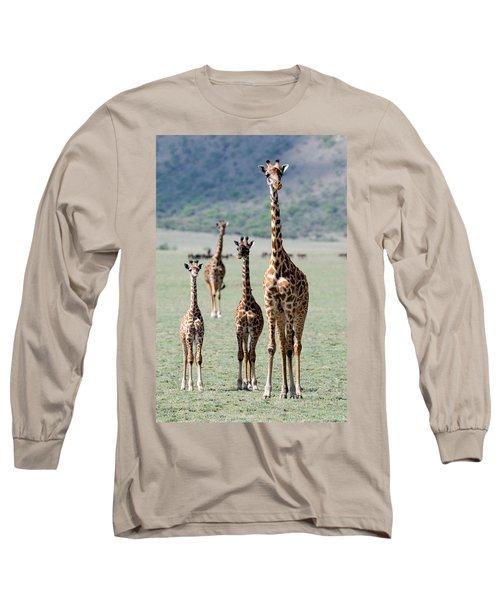 Giraffes Giraffa Camelopardalis Long Sleeve T-Shirt