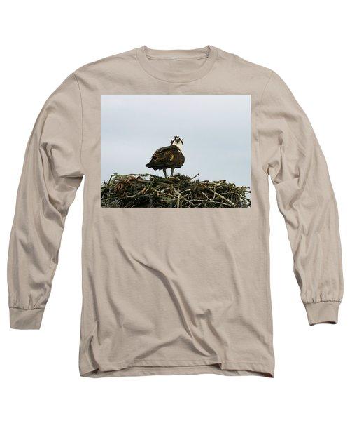 Osprey Nesting Long Sleeve T-Shirt