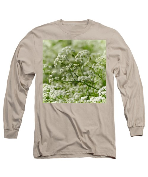 Queen Annes Lace Long Sleeve T-Shirt