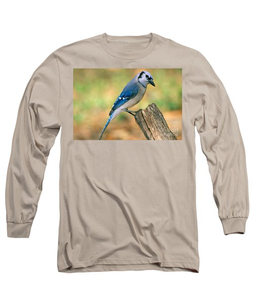 Blue Jay Long Sleeve T-Shirt by Millard H. Sharp