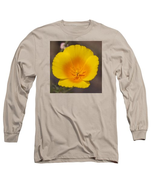 California Sunshine Long Sleeve T-Shirt by Caitlyn  Grasso