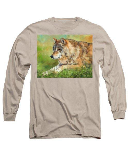 Grey Wolf Long Sleeve T-Shirt by David Stribbling