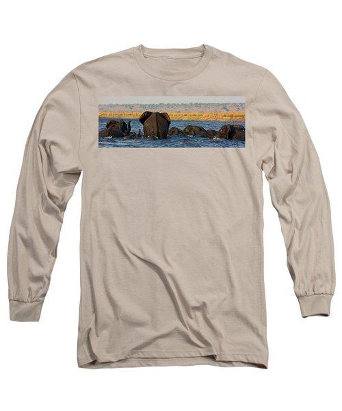 Long Sleeve T-Shirt featuring the photograph Kalahari Elephants Crossing Chobe River by Amanda Stadther