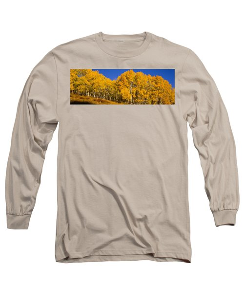 Low Angle View Of Aspen Trees Long Sleeve T-Shirt