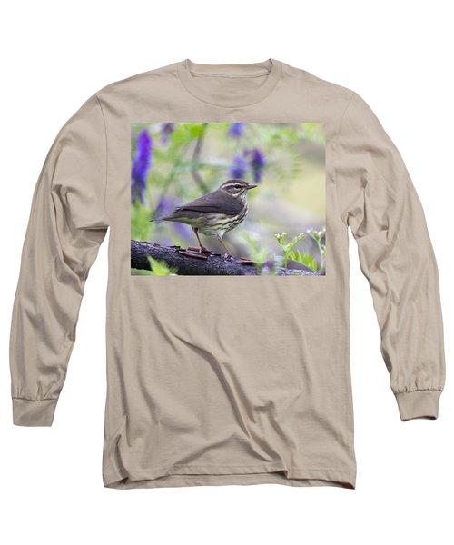 Northern Waterthrush Long Sleeve T-Shirt by Doug Lloyd