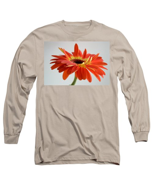 A Beautiful Dream Long Sleeve T-Shirt