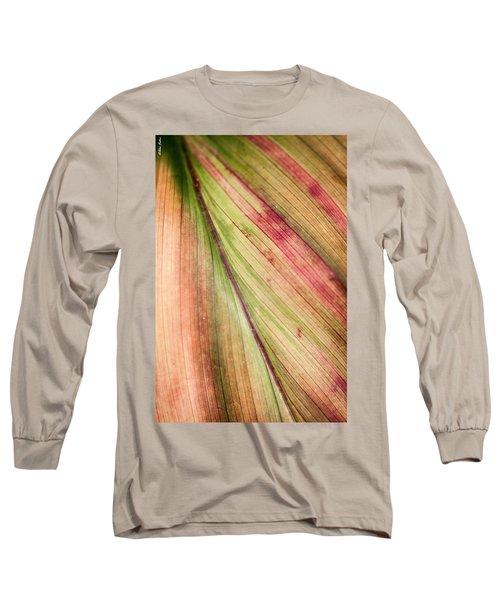 A Leaf Long Sleeve T-Shirt