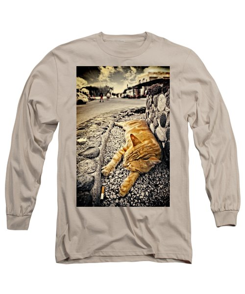 Alley Cat Siesta In Grunge Long Sleeve T-Shirt by Meirion Matthias