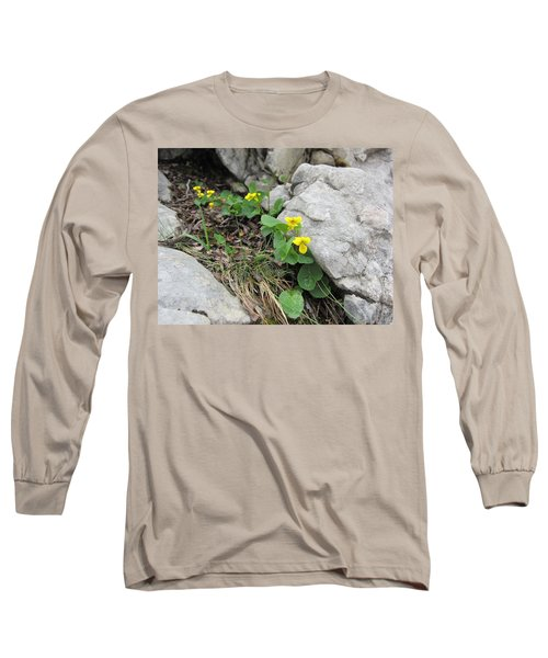 Long Sleeve T-Shirt featuring the photograph Alpine Beauty 1 by Pema Hou